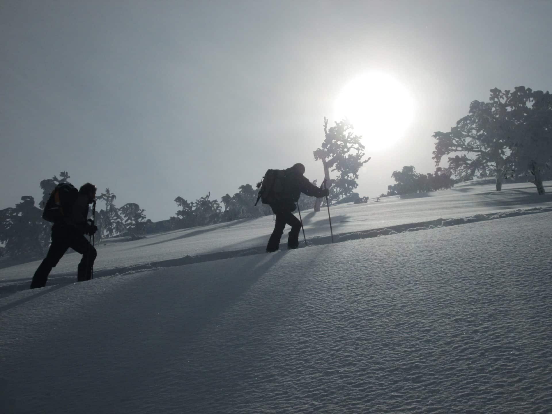 7-day backcountry skiing tour in Hokkaido