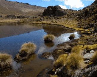 Lake at Mount Kenya National Park