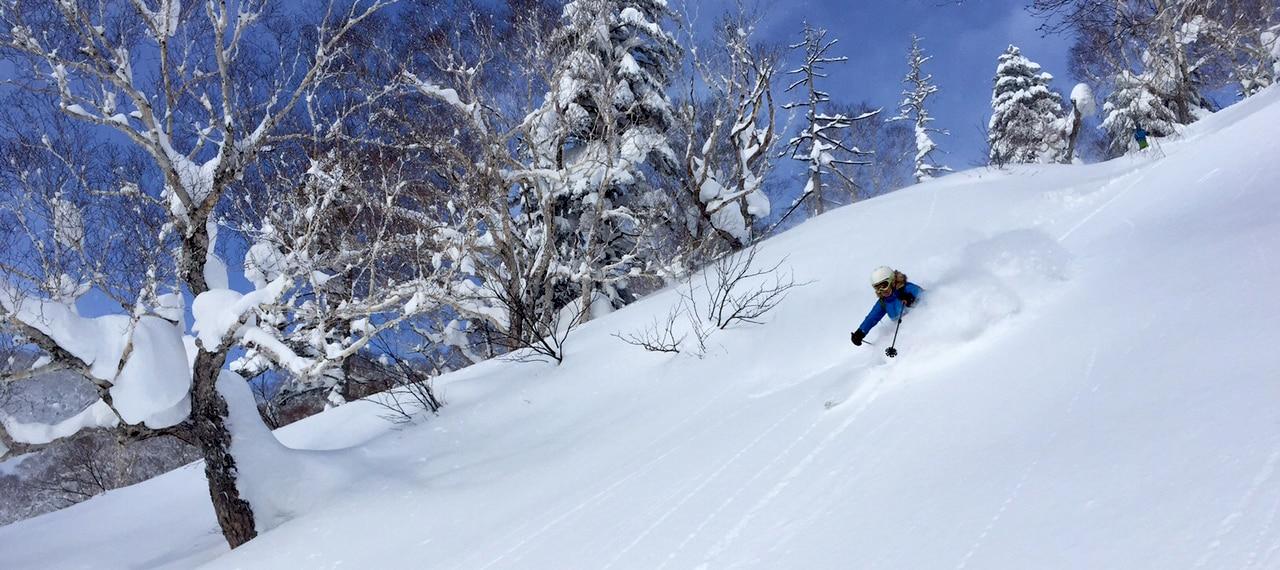 Hokkaido backcountry and off piste skiing