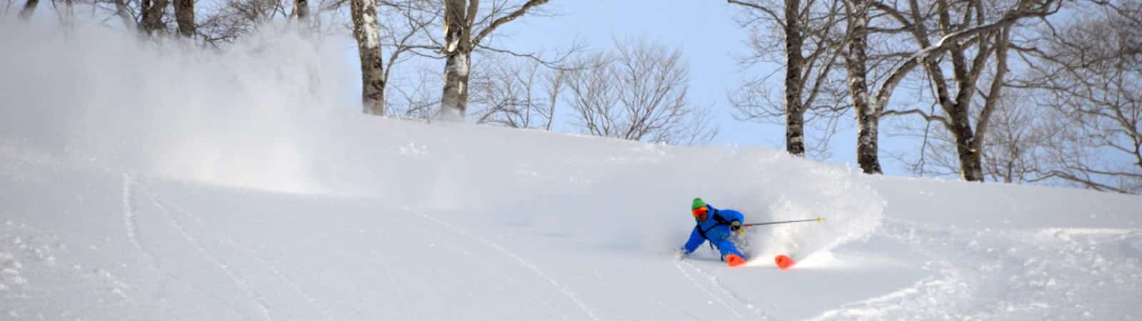 Freeride skiing in Gunma and Nigata