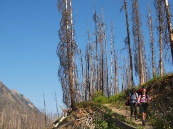 Rockwall Trail