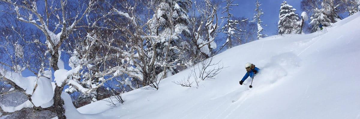 Powder skiing in Hokkaido