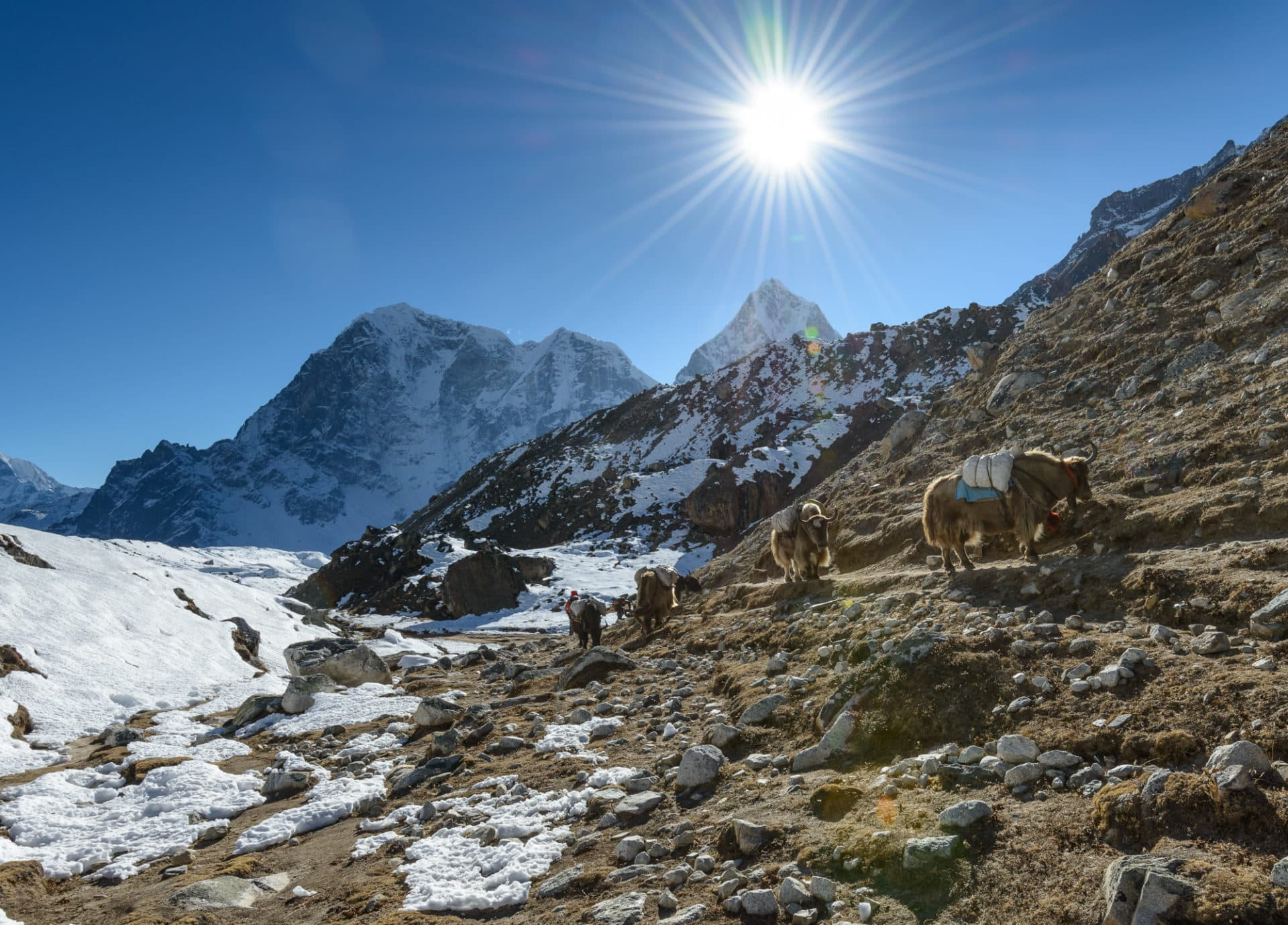 Everest Base Camp 19 Day Guided Hiking Tour