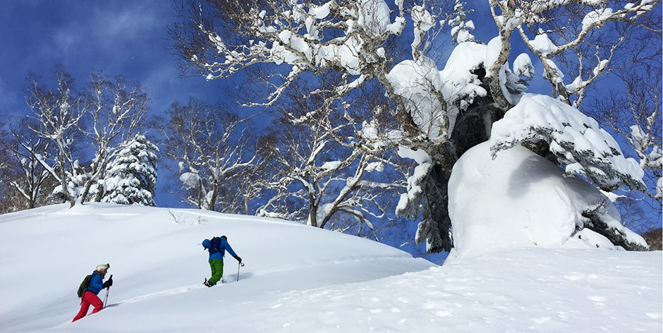 Ski touring in Hokkaido