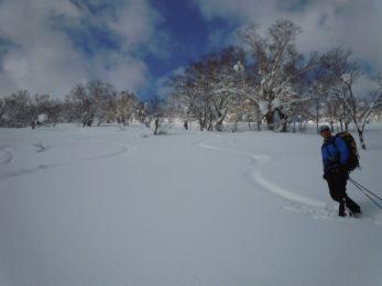 Skier on Mt Harukayama, Hokkaido