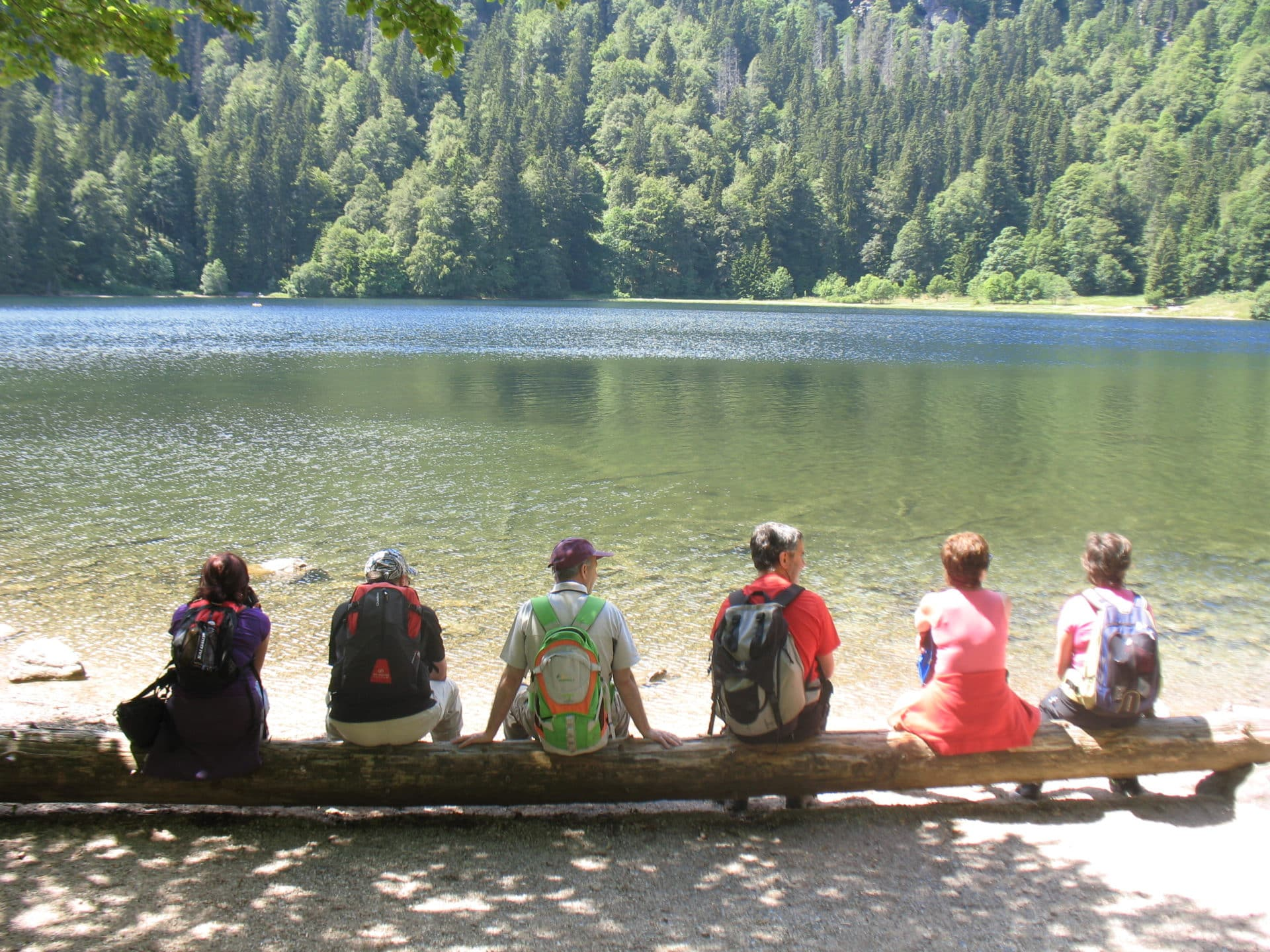 Black Forest 5-day hiking tour