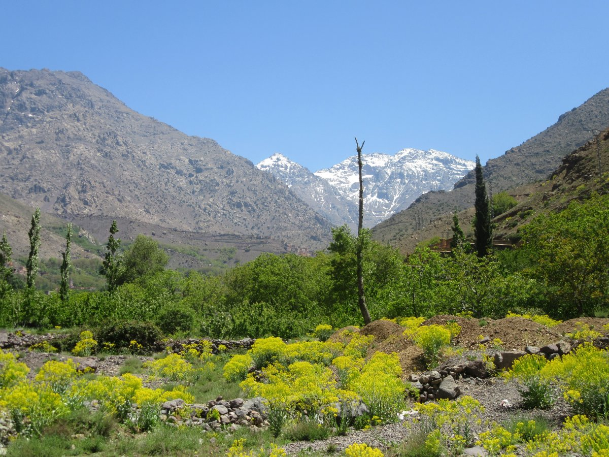 3-day guided climb of Mount Toubkal