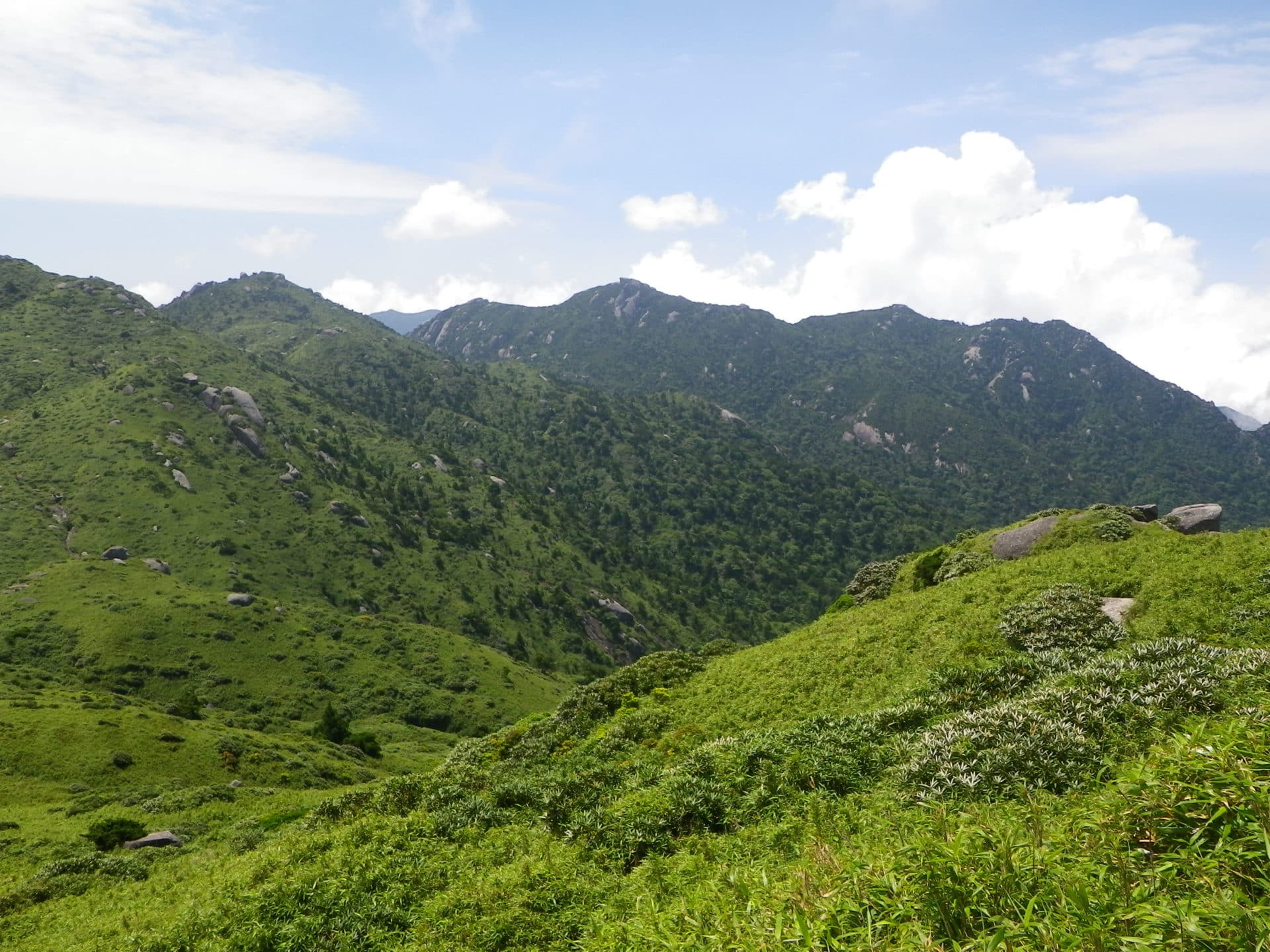 Hiking in Mount Miyanoura, Yakushima