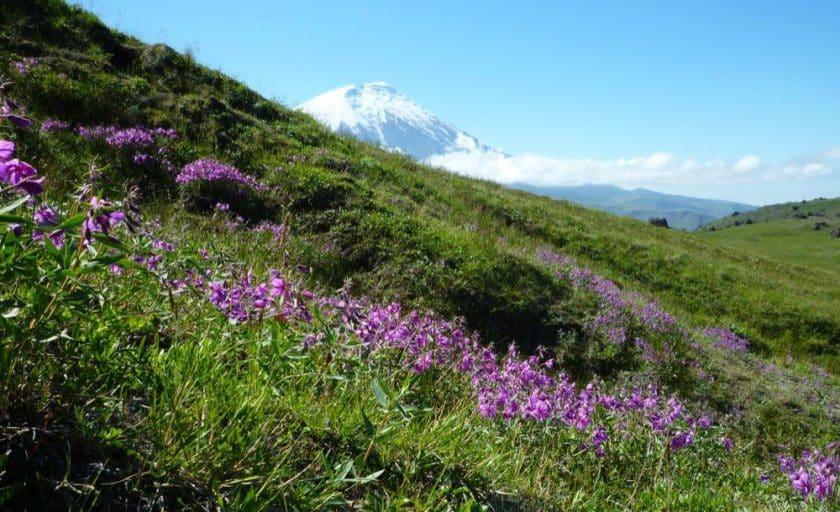 summer-trekking-in-kamchatka-3