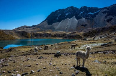 One week Ausangate Trek with a guide