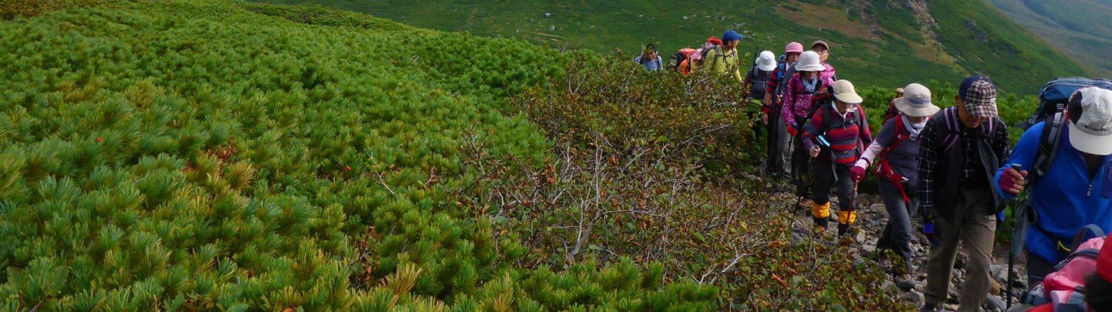 1 day Mt. Rausu trekking in Shiretoko, Hokkaido