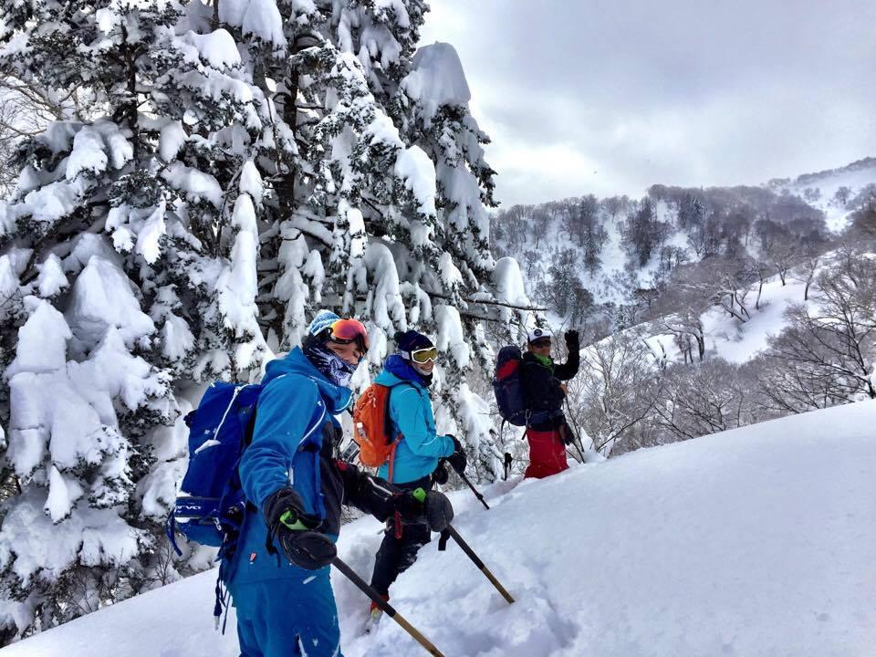 Hokkaido BC ski