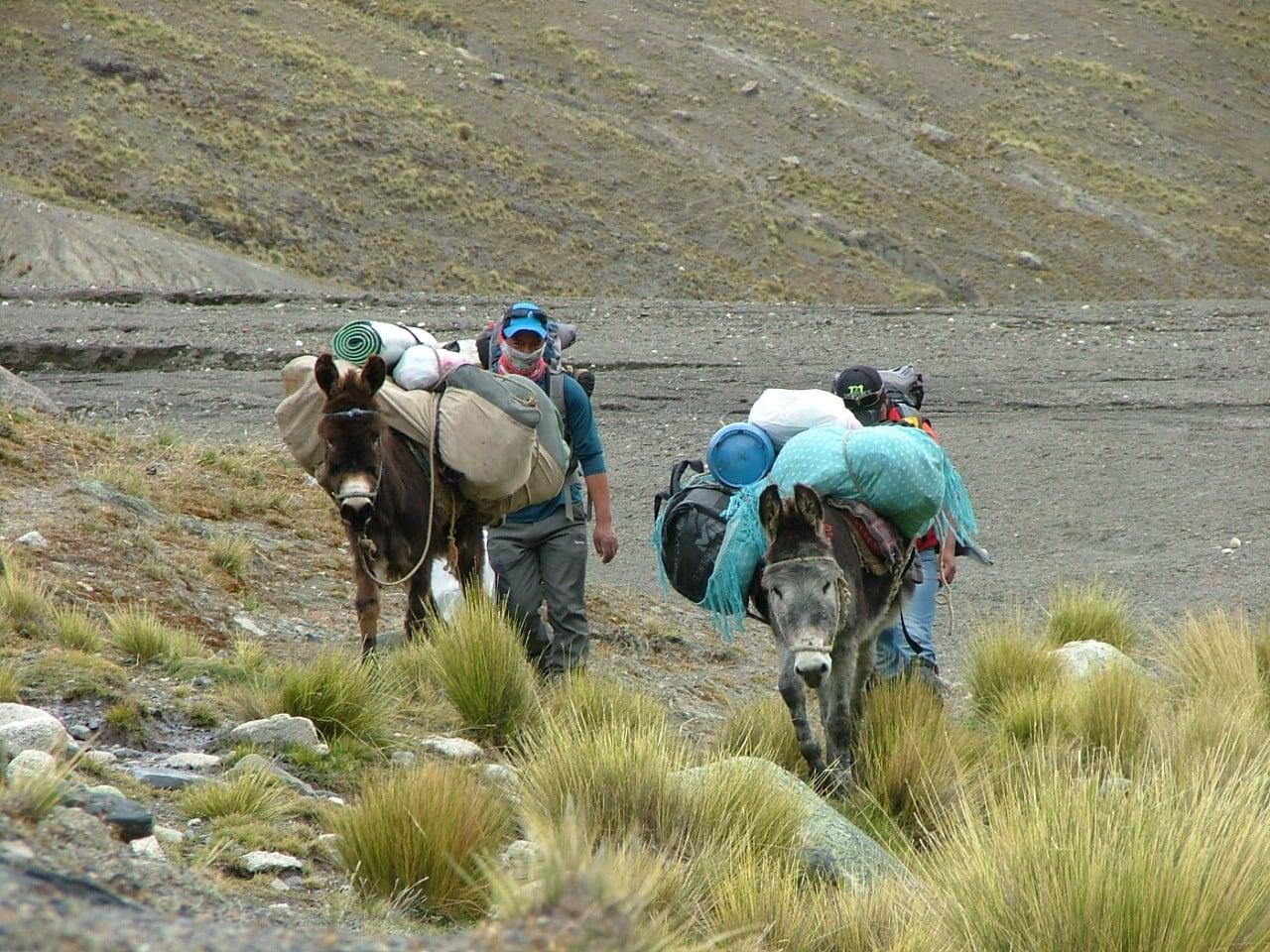 4-day Maria Lloco trek, Bolivia