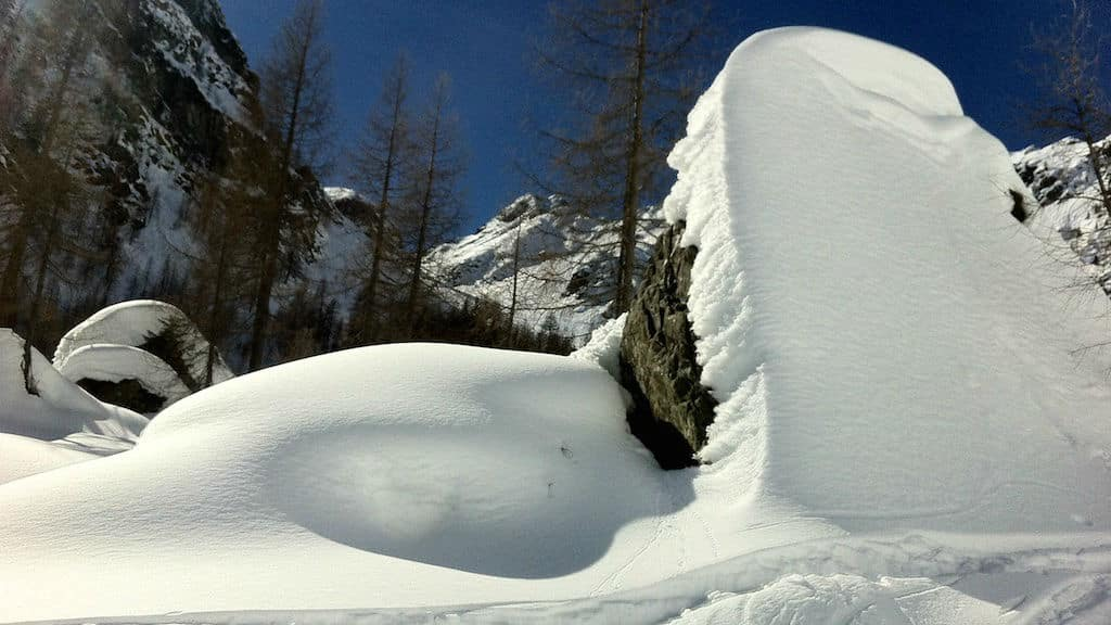 Lesachtal 5-day guided snowshoeing tour