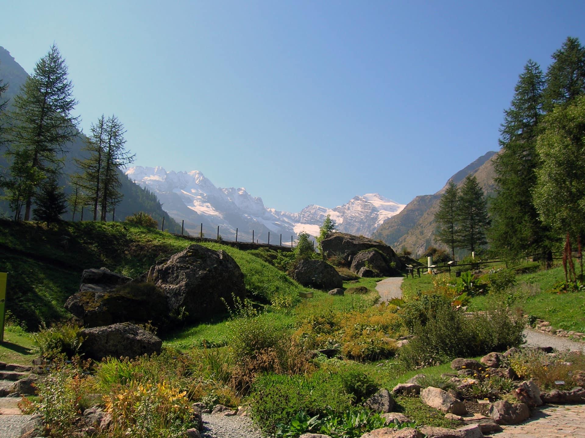 Rock climbing trip in Gran Paradiso National Park