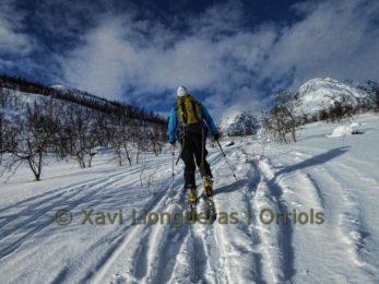 8-day ski touring program in the Lyngen Alps