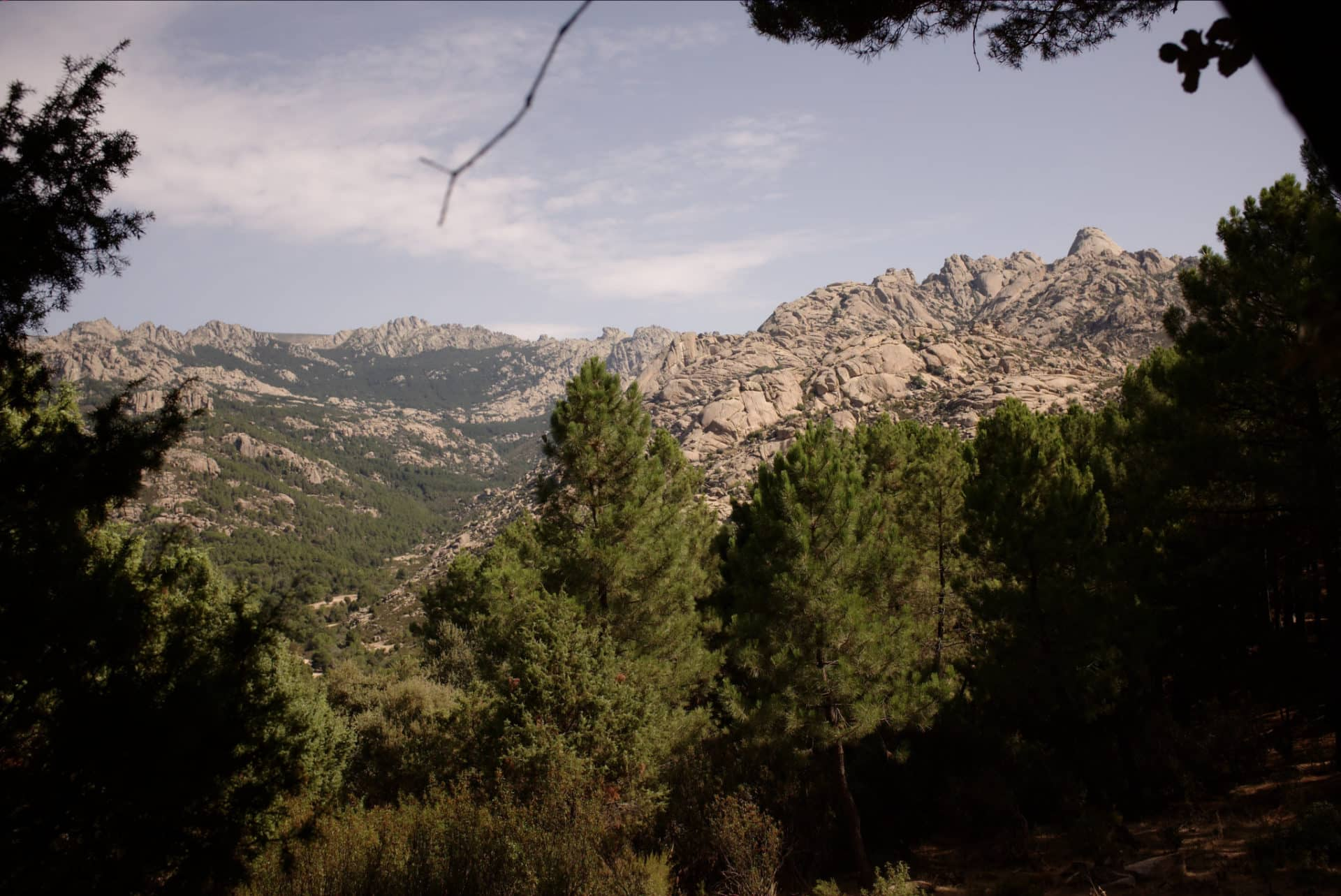 1 or more days hiking in La Pedriza, Madrid