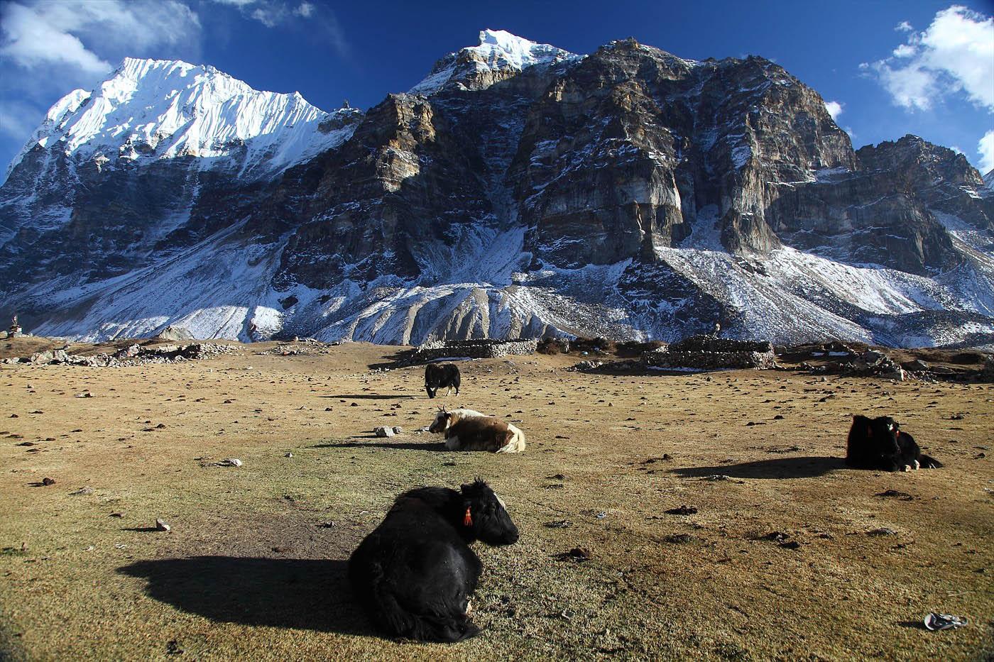 Kanchenjunga Trek, 27-day program