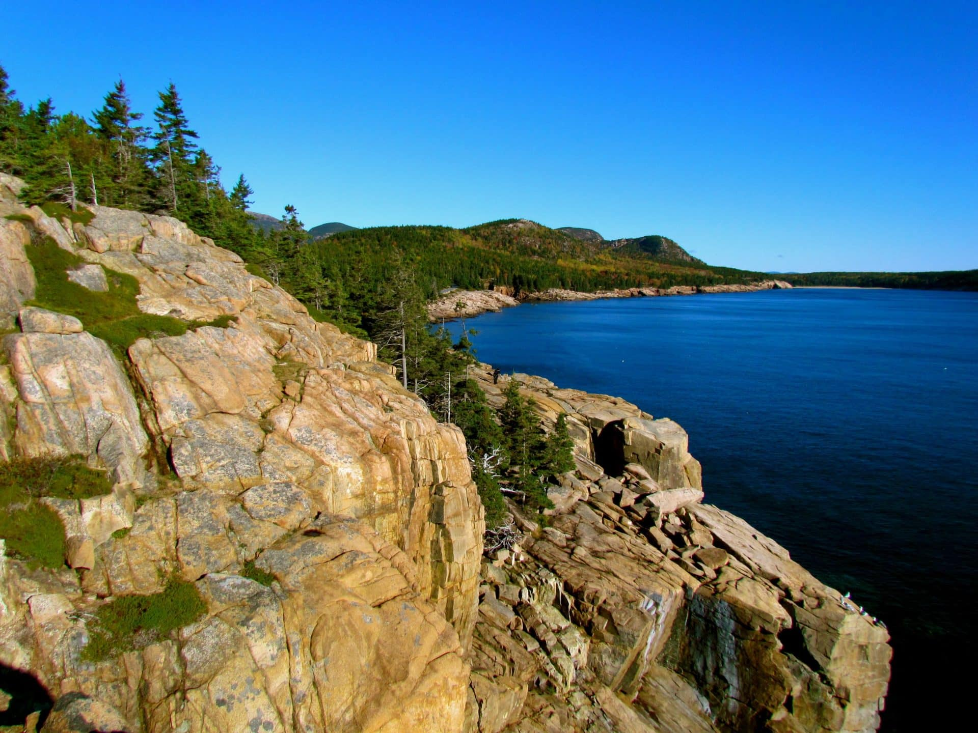 South Otter Cliffs, Acadia, Guided Rock Climbing