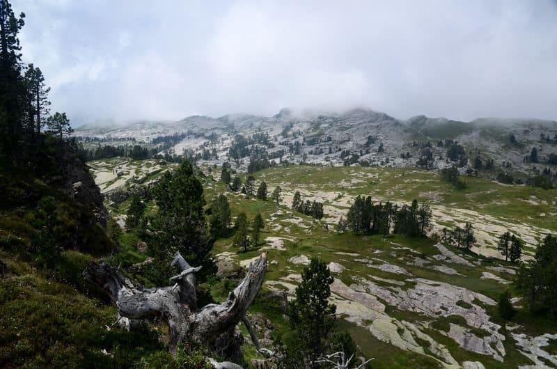 One day guided trek to Sieben Hengste ridge in Emmental, Bern