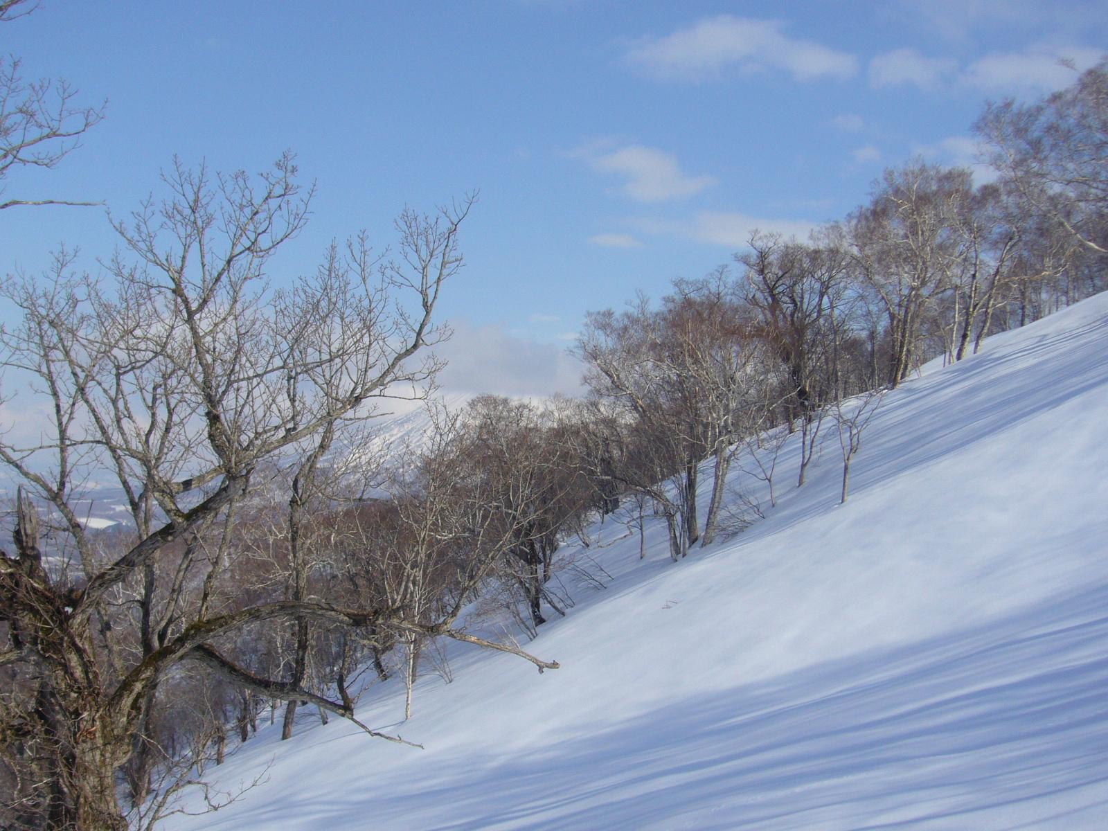 Niseko to Asahidake: Backcountry Skiing in Hokkaido