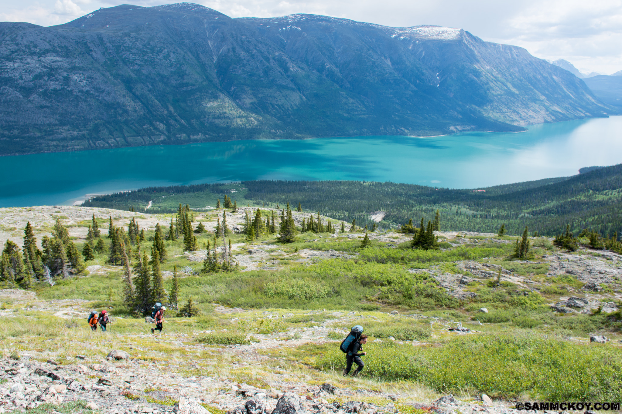 Southwest Yukon, Canada, Guided 10 Day Hike. 10-day Trip