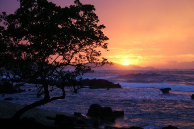 Puerto Rico Adventure Guides-
