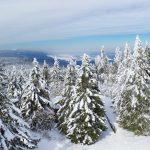 Czech Mountain Guides-