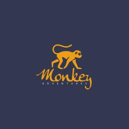 Monkey Adventures